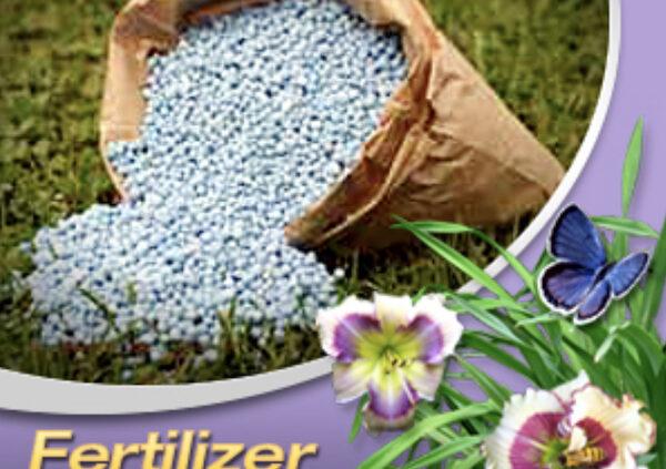 Australian fertiliser for daylilies