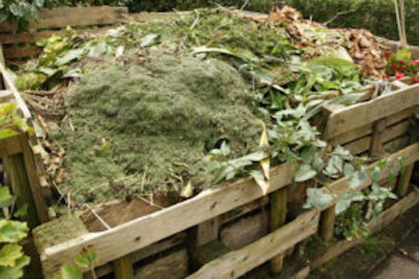 Compost pile full of green and brown raw waste materials