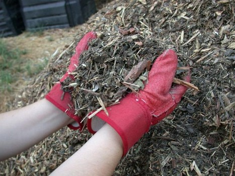 which are the best mulches for gardening