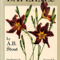 daylilies book was published 1934
