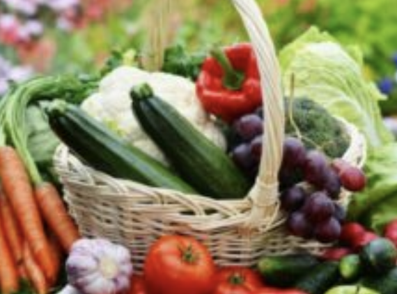 Organic Gardening basket of vegetables and fruit