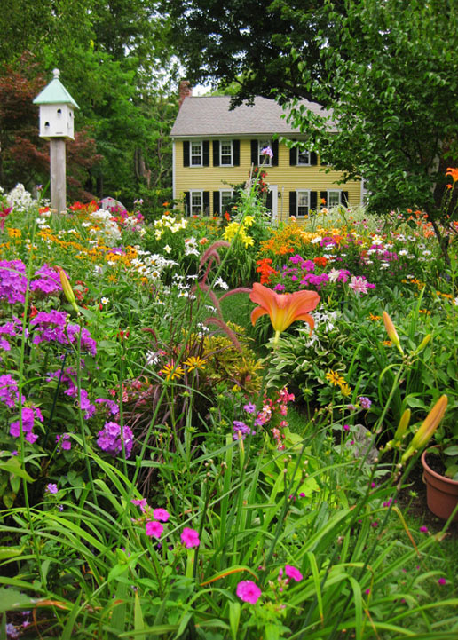 English Cottage Gardens Perennials Bulbs Shrubs plants flowers