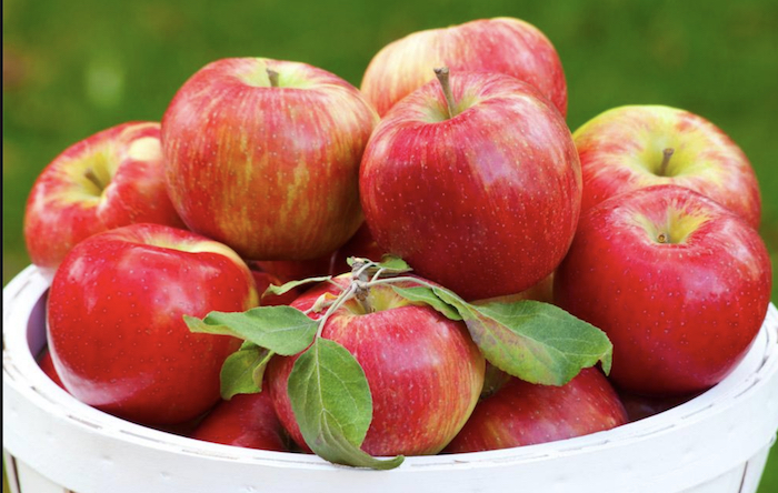 Red apples in a white basket