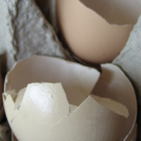 Hints of using eggshells in the garden