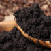 Coffee Grounds Garden Fertiliser