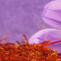 Saffron Crocus Expensive Delicacy Home Cooking Needs