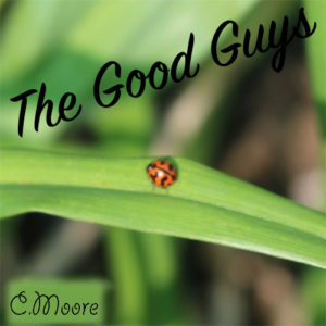 Attracting-LadyBugs-to-your-Garden--300x300