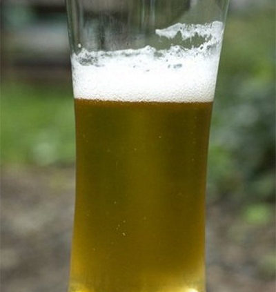 Beer-compost-fertiliser-as-plant-food-for-garden-plants-and-lawns-