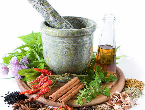 Growing-Medicinal-Plants-Herbs-Herbal-Remedies-that-Heal