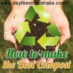 making compost for daylilies