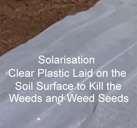 Soil-Sterilisation-Using-Steam-Kitchen-Oven-Microwave-Solarisation