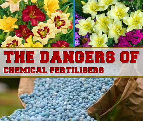 chemical fertilisers showing the danger