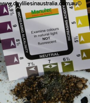 The Importance of Soil pH for Growing Daylilies 1