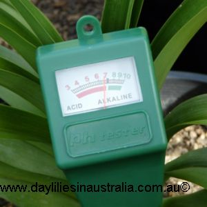 The Importance of Soil pH for Growing Daylilies1