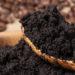 Coffee Grounds Garden Fertiliser