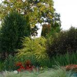What-is-Xeriscape-Gardening