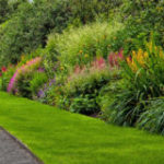 Ornamental gardens plants
